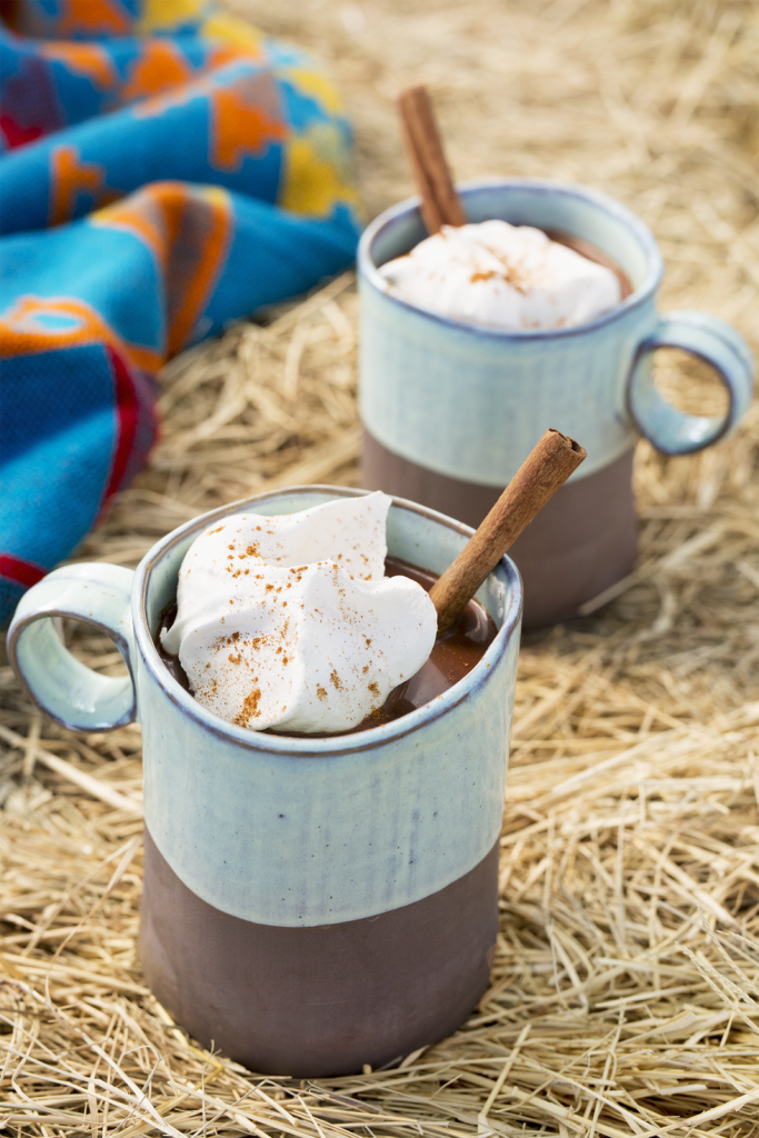 Country Living Spiced Mexican Hot Chocolate