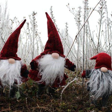 Festive Gnomes Outside
