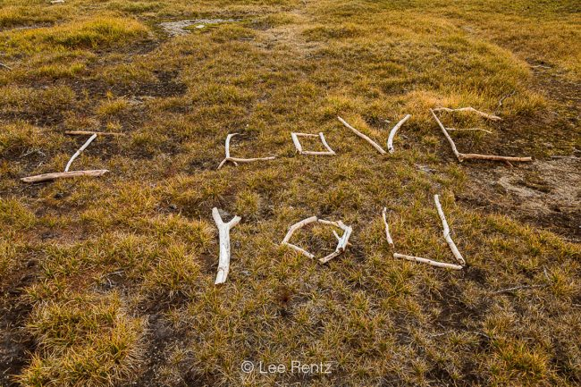 """""""I Love You"""" Message Made of Twigs in The Enchantments"""