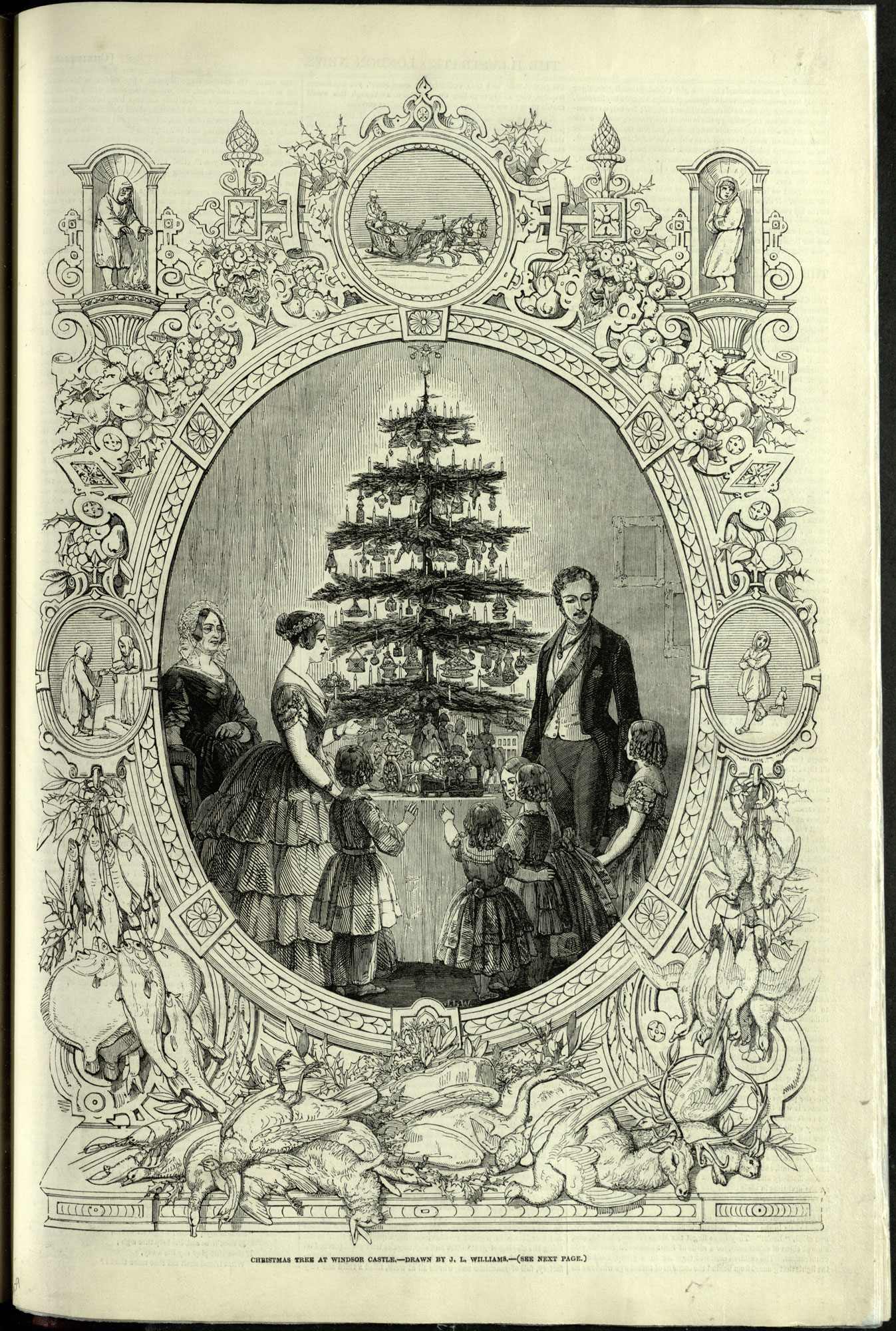 Illustrated London News - Image of Christmas Tree at Windsor Castle